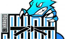 V Otwarte Mistrzostwa Zabierzowa w Judo Młodzików i Dzieci